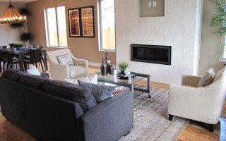 Standard Fireplace, niche & tile